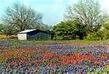 Drug Treatment Centers Texas